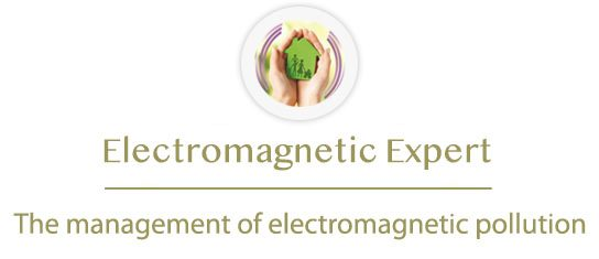 electromagnetic-expert.com